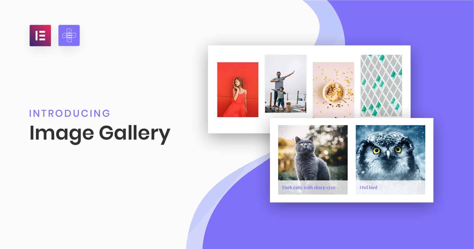 Image Gallery og The Plus Addons for Elementor